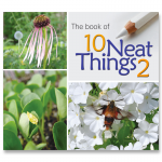 Book of 10 Neat Things 2